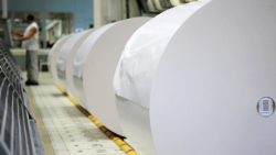 Since 2015 China has been regarded as the biggest national market for paper packaging. With nearly 25 per cent of global consumption, it has relegated the United States to second position. Photo: VDP