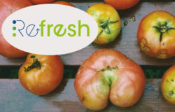 The European project REFRESH in Germany, Spain, Hungary and the Netherlands aims to promote anti-food-waste initiatives through alliances between governments, businesses and local interest groups.